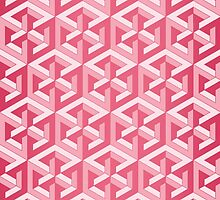 Penrose Cube - Pink by VanHogTrio