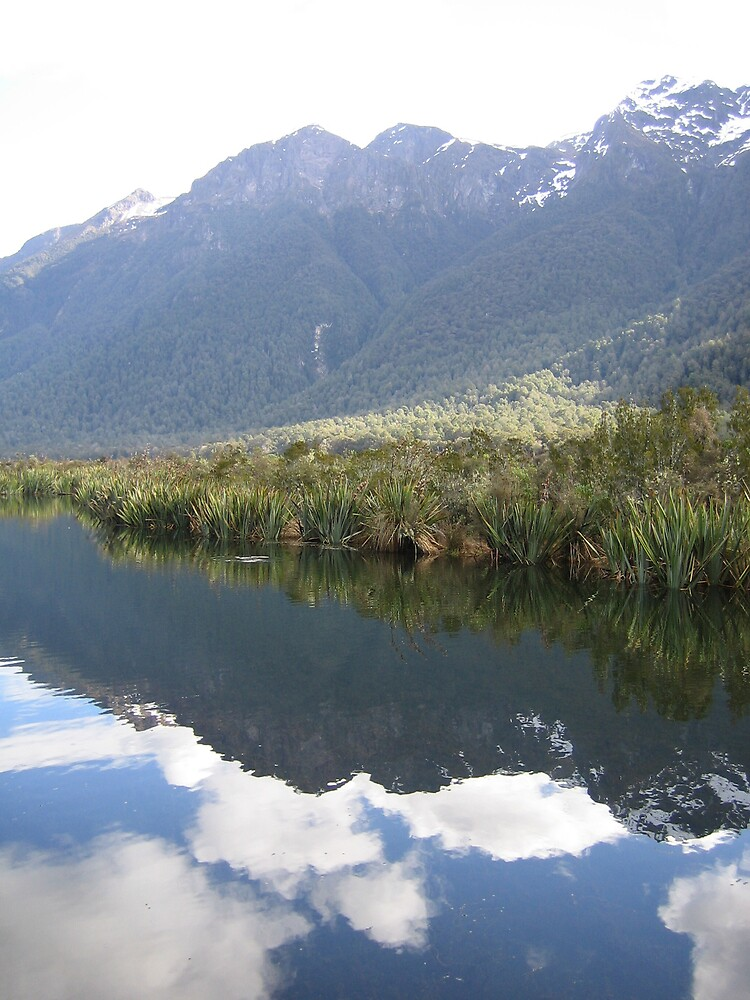 Te Anau New Zealand Mirror Pools by Danielle Murdoch