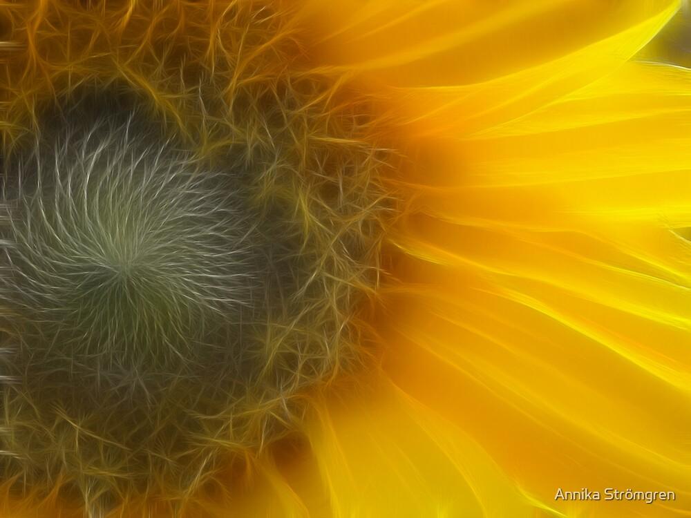 Fractal sunflower by Annika Strömgren