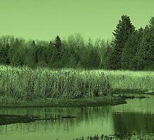 Landscape In Green 2 by Gene Cyr