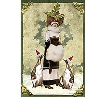Holiday Finery Photographic Print