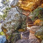 Stairs through the Gorge by Lexa Harpell