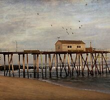 Belmar Fishing Pier by Debra Fedchin