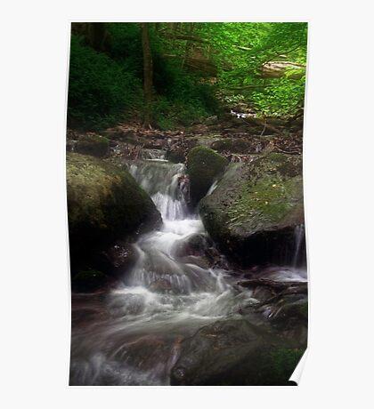 A mountain stream Poster