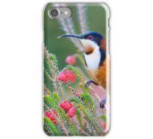 the honey eater - lv iPhone Case/Skin