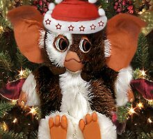GIZMO READY FOR CHRISTMAS PICTURE AND OR CARD by ✿✿ Bonita ✿✿ ђєℓℓσ