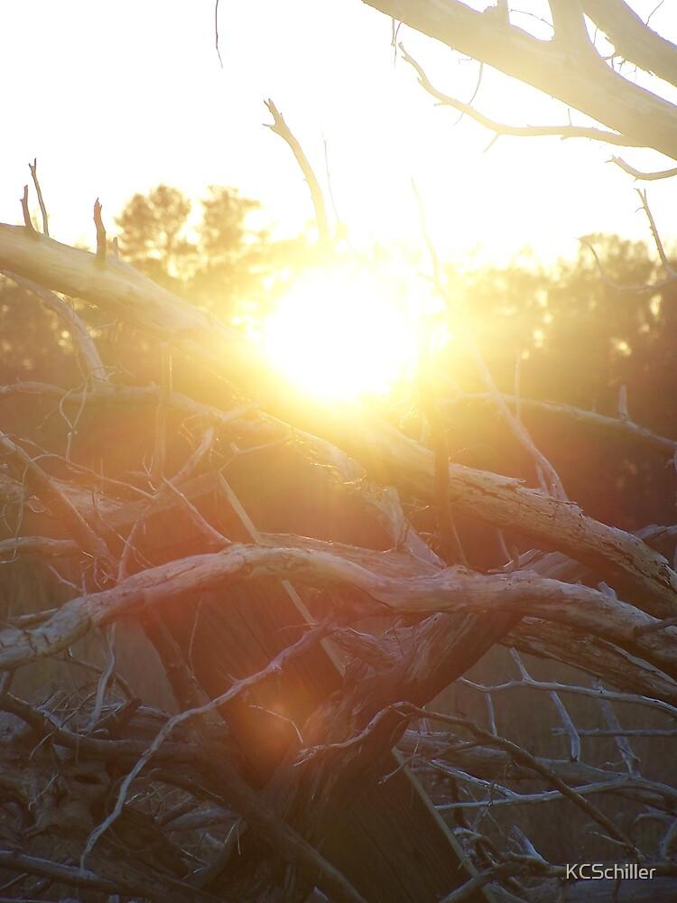 Last Ray of Light by KCSchiller