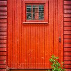 The Saw Mill Door by Debra Fedchin