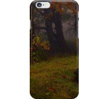 Woodland Stillness iPhone Case/Skin