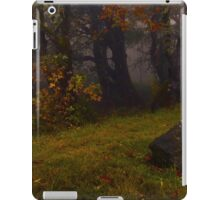 Woodland Stillness iPad Case/Skin