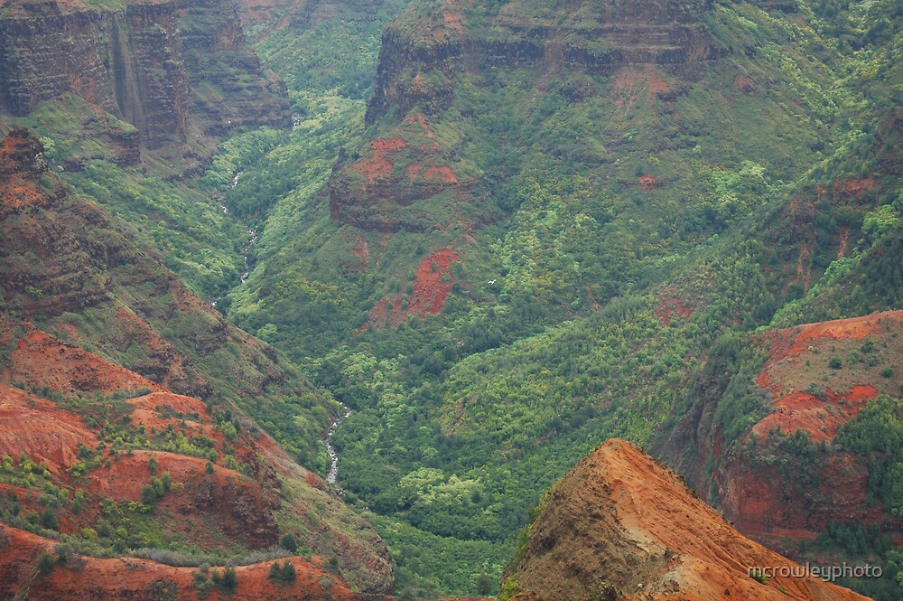 Waimea Canyon 2 by mcrowleyphoto