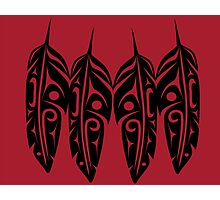 Four Feathers Black on Red Photographic Print