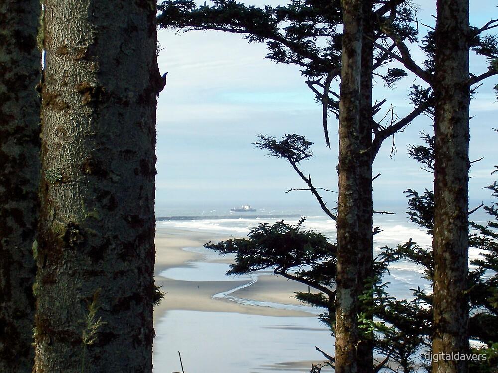Peeking thru the Trees by digitaldavers