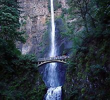 Multnomah Falls - Oregon by Karen Ashenberner