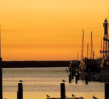 Sunset Coast (Hillary's Boat Harbour) W.A by norgan
