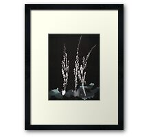 0005 - Brush and Ink - Flowers Framed Print