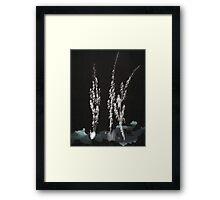 0005 - Brush and Ink - Flowers Framed Print