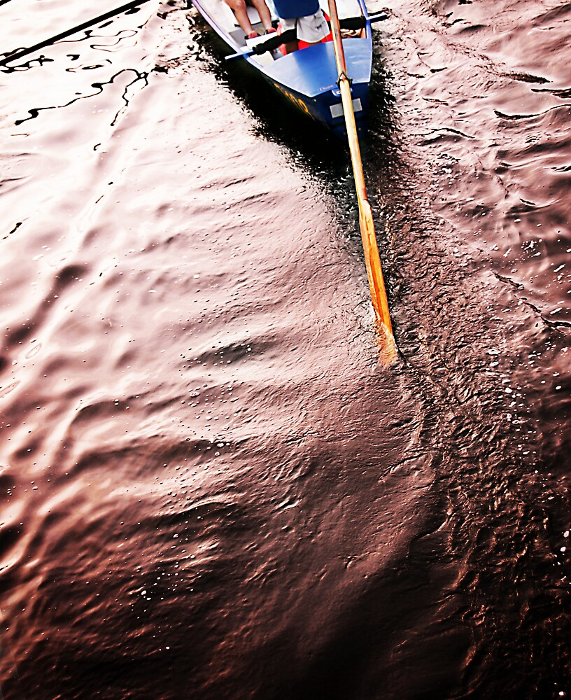 Boat Tail by bobovoz