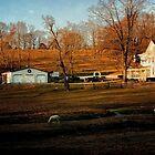 Pastural Scene in New Jersey by Debra Fedchin