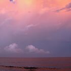 Purple Sky by Woodgate