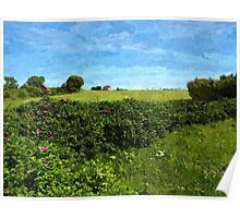 Beautiful green field and blue sky Poster