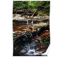Along the Falls Trail Poster
