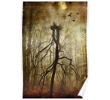 The Spookiest Tree in the Woods Poster