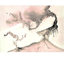 0011 - Brush and Ink - Left Photographic Print