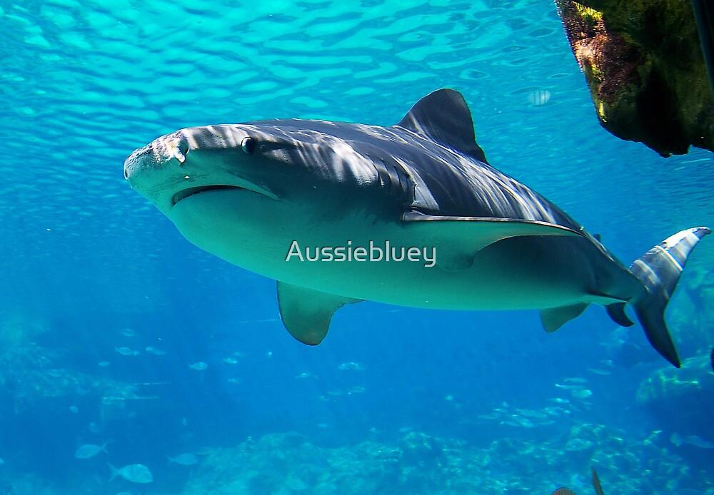 Just keep swimming. by Aussiebluey