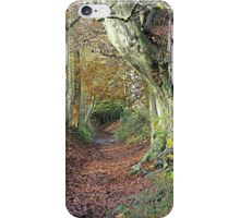 Boundary Path iPhone Case/Skin