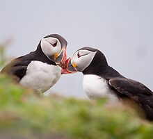 Bonding moment by Christopher Cullen