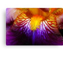 Inside An Iris 2 Canvas Print