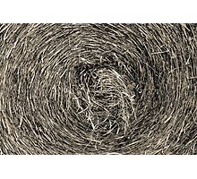 Swirling hay (B&W) Photographic Print