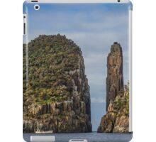 Tasman Island Totem Pole, Tasmania iPad Case/Skin