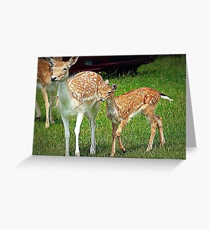 Together We Can........ Greeting Card
