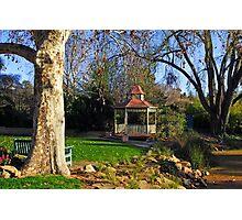 Wagga Wagga Botanic Gardens Photographic Print