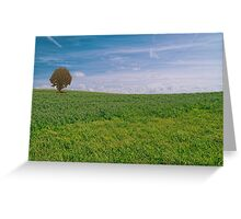 Sea of grass - 1 Greeting Card