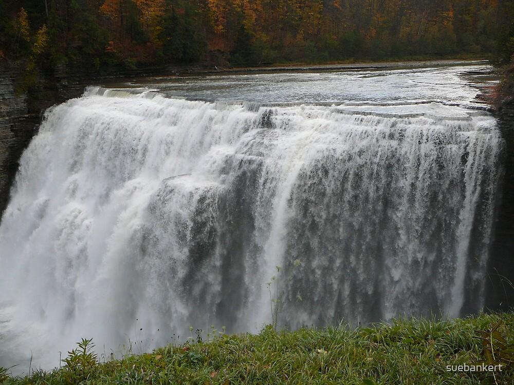 Letchworth Waterfall 3 by suebankert
