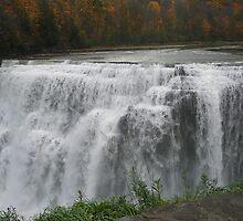 Letchworth Waterfall 4 by suebankert