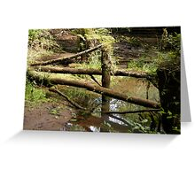 Natures Gate Greeting Card