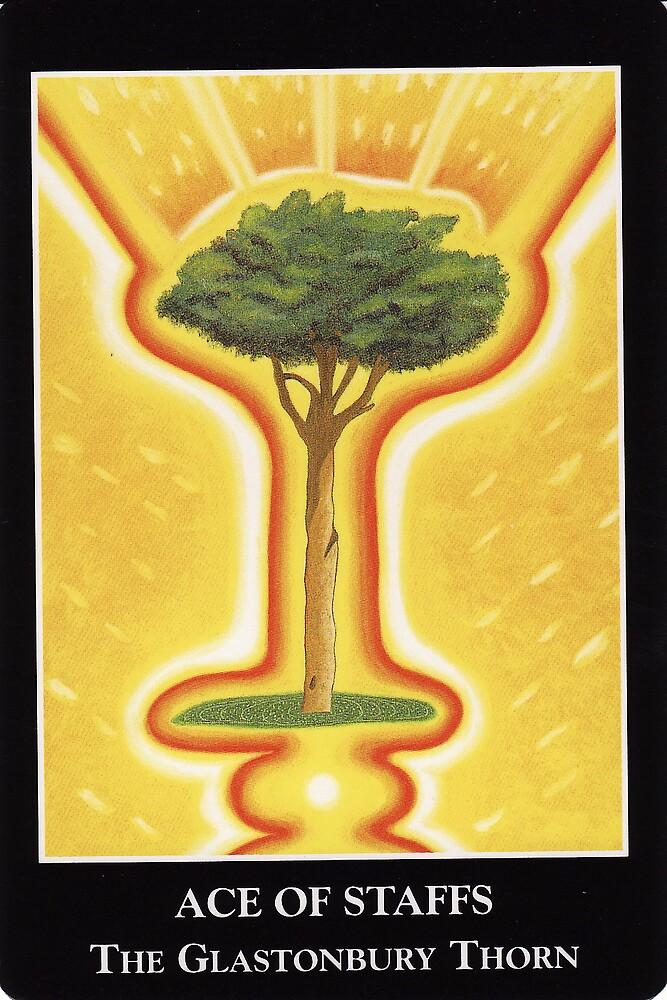 Ace of Staffs - The Glastonbury Thorn by Lisa Tenzin-Dolma