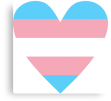 Transgender heart Canvas Print