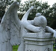 Weeping Angel by trickyruby