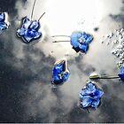 Fallen Delphiniums - Series 1 by Hiroko
