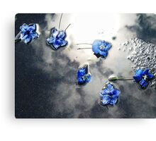 Fallen Delphiniums - Series 1 Canvas Print
