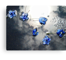 Fallen Delphiniums - Series 1 Canvas Print