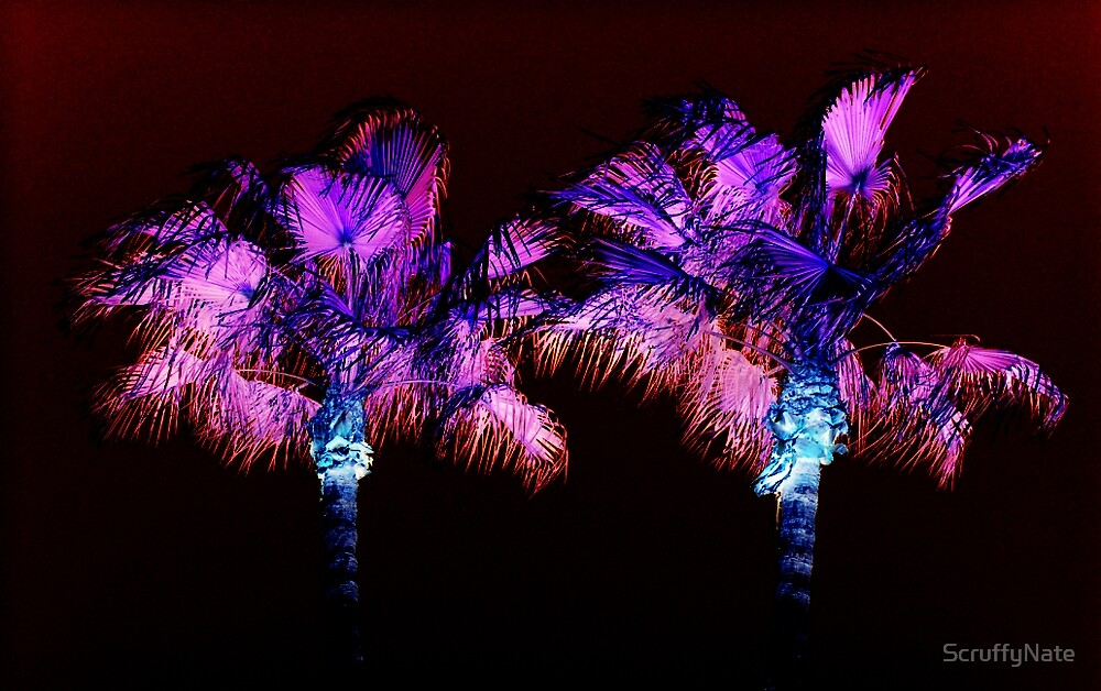 Palms by ScruffyNate