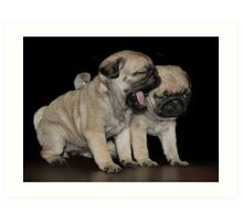 Dogs Breath Art Print