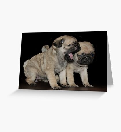 Dogs Breath Greeting Card