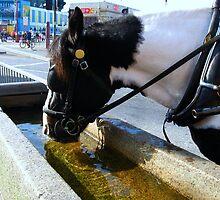 Thirsty Work by Sharon Perrett